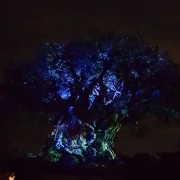 Show am Tree of Life