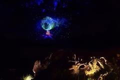 animal-kingdom-nacht-11
