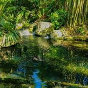 oasis-3