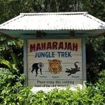 Maharajah Jungle Trek