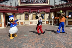 Donald Duck, Mickey Mouse und Goofy