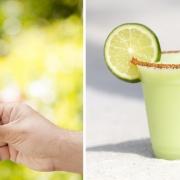 DasTe Fiti Cone Limetten Softeis und der Frozen Margarita gibts im Polynesian Resort