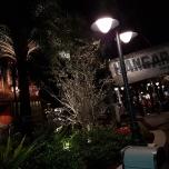 Disney Springs bei Nacht