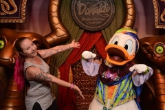 Triff Donald Duck
