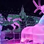 Frozen in Eis