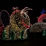 mainstreet-electrical-parade-5