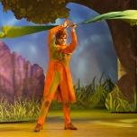 Ein Tänzer der Show