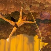 Spektakuläre Akrobatik von Tarzan