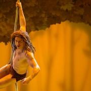 Detail von Tarzan am Seil