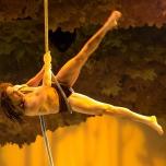 Artistische Showeinlagen im Zentrum des Tarzan-Teils