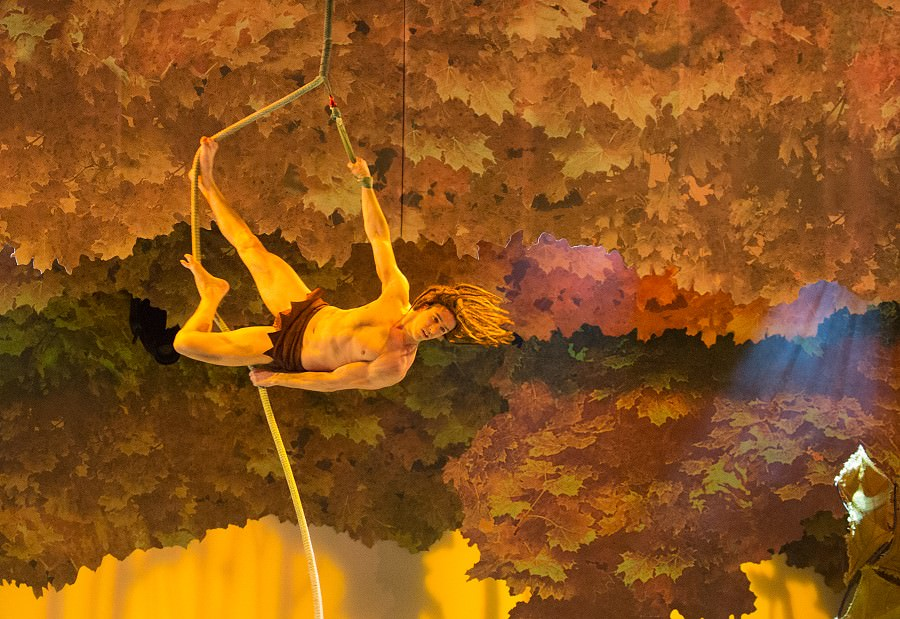 La Foret de l'Enchantement mit Tarzan