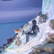 frozen-parade-3
