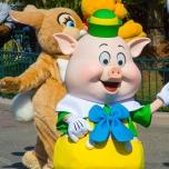 Schweinchen & Miss Bunny