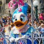 Daisy Duck im Geburtstagskostüm