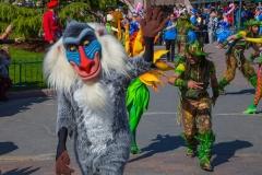 Rafiki im Disneyland
