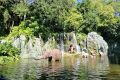 jungle-cruise-4