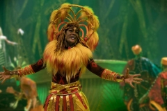 The-Lion-King-Rhythms-of-the-Pride-Lands-6
