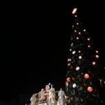 Der Baum wird beleuchtet