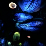 Nächtlicher Waldhimmel Pandora