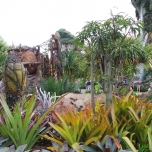Pflanzen von Pandora