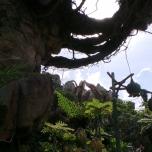 Schlingpflanzen am Felsen