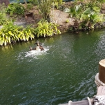 Ein Pirat taucht aus den Fluten auf