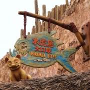 Piranha Bites
