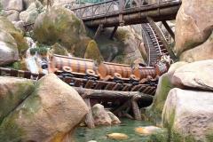 Der Mine Train in Action