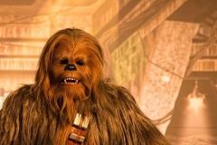 Chewbacca in Disneyland Paris
