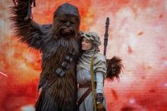 Rey und Chewbacca