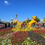Lion King Blumenfigur