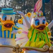 Daisy Duck und Donald Duck bei Goofy's Garden Party