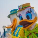 Eine strahlende Daisy bei Goofy's Garden Party