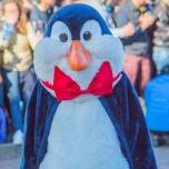 Geburtstagsshow: Pinguin