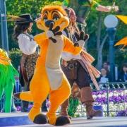Timon bei der Geburtstagsshow im Disneyland