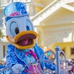 Donald Duck im Geburtstagsoutfit