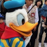 Donald Duck in seinem tollen Outfit