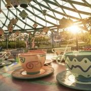 Mad-Hatters-Tea-Cups-Disneyland-Paris