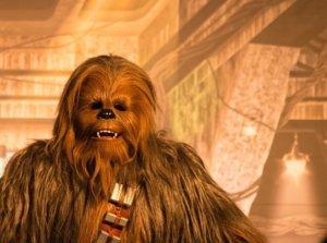 Chewbacca bei seinem Meet & Greet im Disneyland Paris
