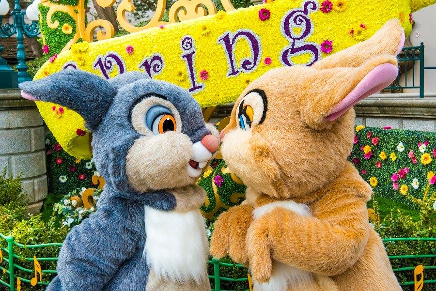 Character Safari 24  Klopfer und Miss Bunny