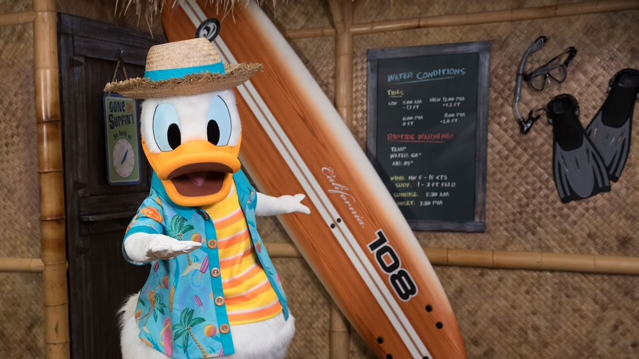 Donald mit Surfboard