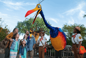 Die gefiederte Vogeldame Kevin kann man nun in Animal Kingdom treffen