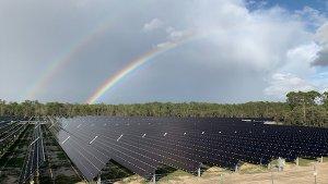 Die neuen Solarpanels im Walt Disney World Resort sind nun in betrieb