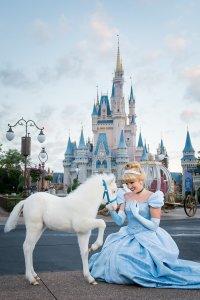 Shetland Pony Lilly ist das erste schneeweiße Pony das im Resort geboren wurde