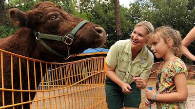 Rafikis Planet Watch eröffnet diesen Sommer wieder im Animal Kingdom