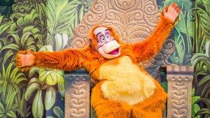 King Louie im Disneyland teffen