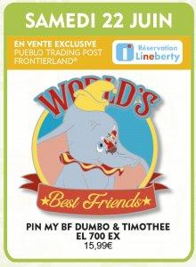 ein Disney-Pin mit Dumbo und Timotheus