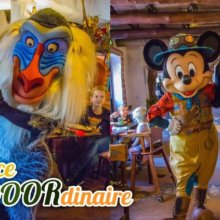 Dörthe und Torsten mit Rafiki und Mickey Mouse im Explorer-Outfit