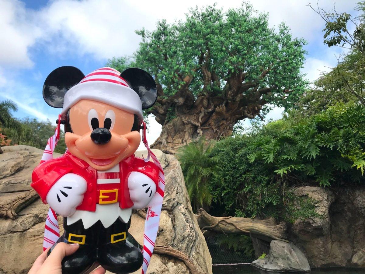 ein Elfen Mickey-Popcorneimer wird vor dem Tree of Life in die Höhe gehalten