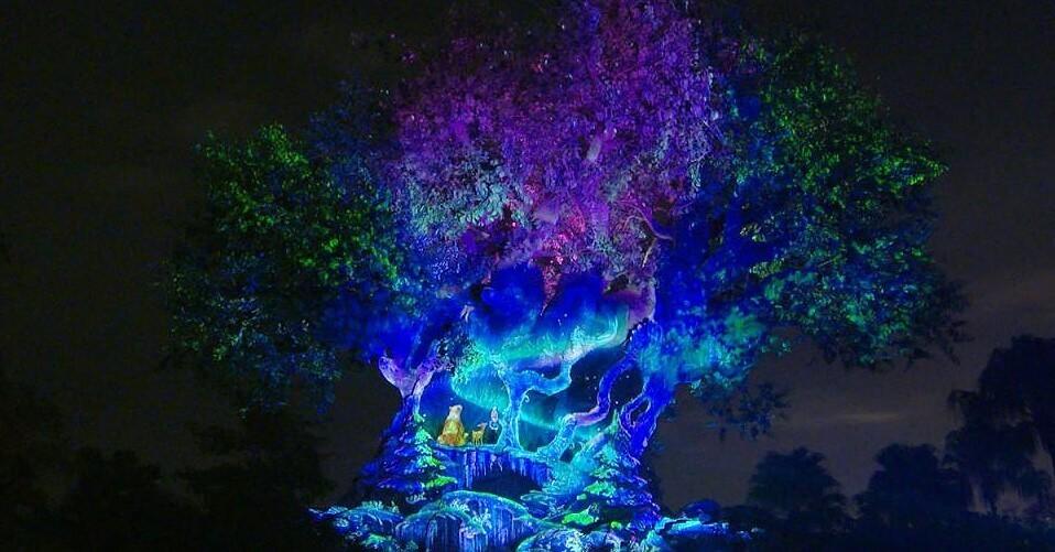 Tree of Life im Animal Kingdom wird farbig angestrahlt